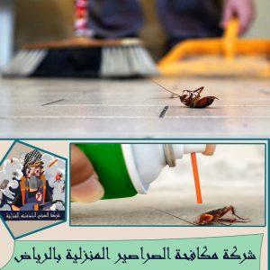 مكافحة الصراصير المنزلية بالرياض