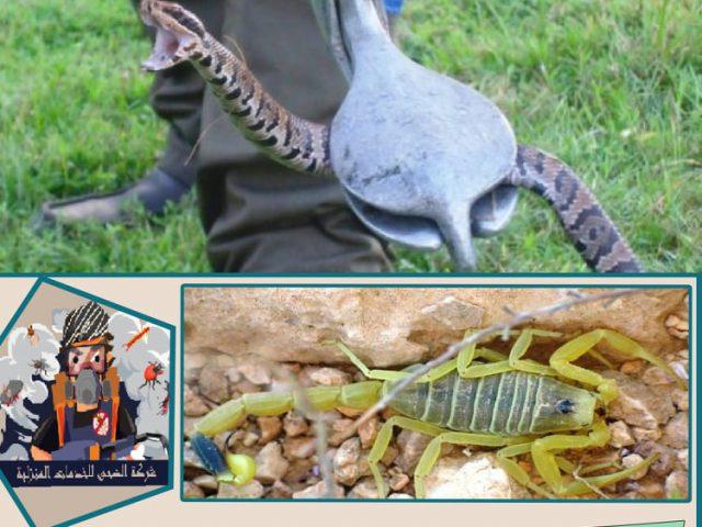 مكافحة الثعابين والعقارب بالرياض